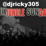 Mixjungle Sundays Ep-009 - Dj Ricky 305