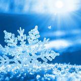PoL - Snowflakes (Live 5.12.2015)
