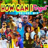 CD JOHNNY HOW CAN I FORGET CULTURE MIX 2019