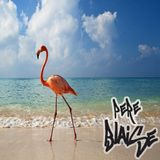 Boucing On The Beach ! mixed by Pere Blaise