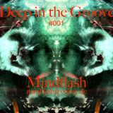 Mindflash - Deep in the Groove #001