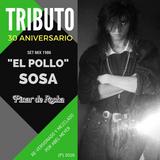 """Tributo 30 Aniversario a la música del DJ de Pinar """"El Pollo"""" Sosa (Reversionado por Abel Meyer)"""
