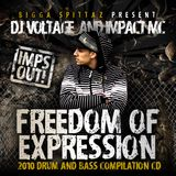 ''Freedom Of Expression'' Voltage (Cabin Fever) & Impact MC