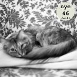 """nyepodcastet46 """"This Book About My Life"""" (dec 2016)"""