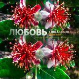 Libra Libur.. Любовь [ groove & jazz ]