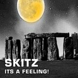 Skitz - Its a Feeling!