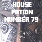 House Potion Number 79