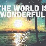 The World is Wonderful