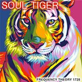 """Frequency Theory 1728 """"Soul Tiger"""""""