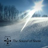 Seasonal Cycles - The Sound of Snow