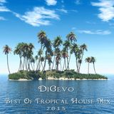 DiGevo - Best of Tropical House 2015