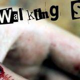 Walking Skank vol.1 by DjBibz 20/09/2012