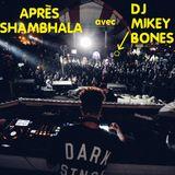 Après Shambhala avec DJ Mikey Bones
