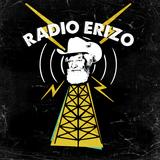 RADIO ERIZO-GARBAGE, DIVEIN, PASTILLA, BABASÓNICOS, LOS TRES Y MÁS