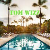 Tom Wizz - June 2015 Mix - Club Electro House