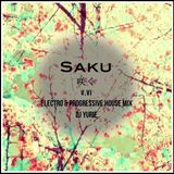 Saku V.IV (Electro & Progressive House Mix)