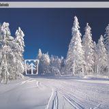 Sasha Drog - Snowtime for Abutomin