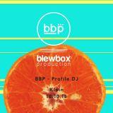 BBP - Profile DJ - Klein