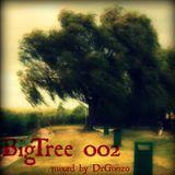 DrGonzo - BigTree 002 (2013.04.08.)
