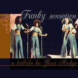 Elwai Soul -  Funky sensation
