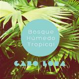 Bosque Humedo Tropical - Gabo Lora