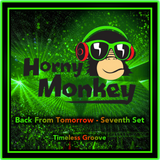 Back From Tomorrow - Seventh Set' Timeless Groove - June 2015 - mixed by Horny Monkey