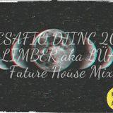 DESAFIO DJINC 2015 - LIMBER aka LÜA - Future House Mix #016