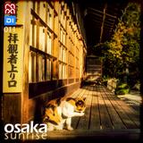 Osaka Sunrise 11