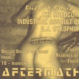 DJ Cykophuk at Aftermath Chicago in 1994.  (Disc 4 of 5)