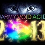 DJARMY VOLD ACID-New Year 2013