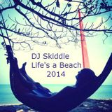 DJ Skiddle - Life's a Beach