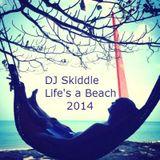 DJ Skiddle - Life's a Beach