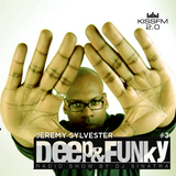 Deep'n'Funky Radio Show #3 Guest Mix by Jeremy Sylvester