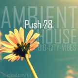 PUSH 28 - BIG-CITY-VIBES - AMBIENT HOUSE