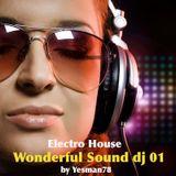 WONDERFUL SOUND 01 (Trauma, Faul, Wad Ad, Pnau, Lissat, Voltaxx, Marc Fisher)
