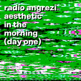 AESTHETIC IN THE MORNING (day one)