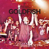 DJ Goldfish Live @ Cravesense 2nd Anniversary 2011