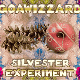 Goawizzard - Silvester Experiment 2015