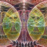 Art Samadhi ft. Broken seeker: Ayahuasca [An invisible portal to awareness]