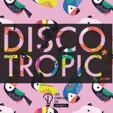 Discotropic mix by Jankev (May 18 - mix #21)