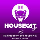 Deep House Cat Show - Raking down the house Mix - with Alex B. Groove