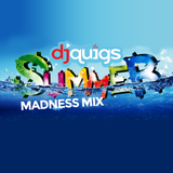 DJ Quigs Summer Madness Mix