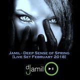 Jamil - Deep Sense of Spring [Live Set February 2018]