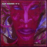 RAW RIDDIMS N° 12