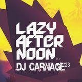 Dj Carnage23 - lazy afternoon