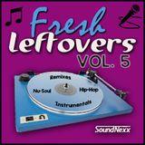 Fresh Leftovers Vol. 5 - Nu-Soul, Hip-Hop, Remixes, Downbeat, Instrumentals