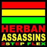 2STEP FLEX