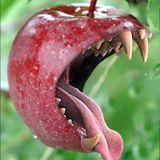 Bit´n Apple