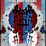 Wonder Dj - FSAL BBOY BREAKS (2013)