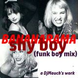 Shy Boy (Funk Boy Mix) BANANARAMA